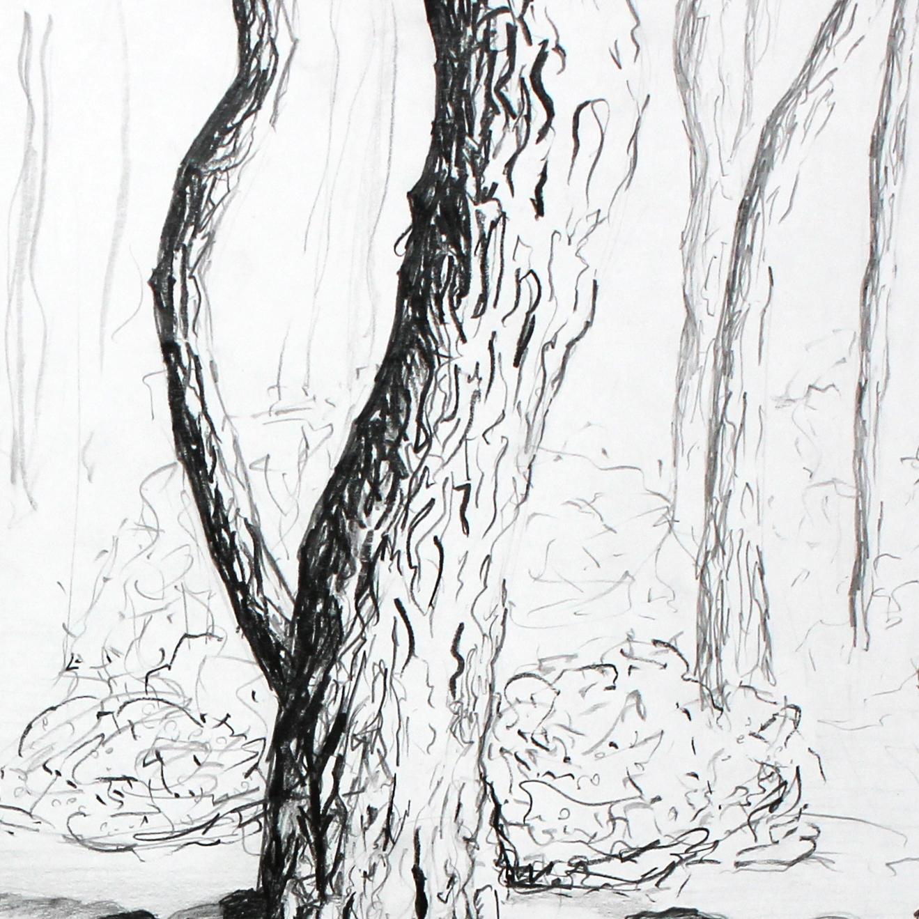 2013 - forêt-sansnote-carre2